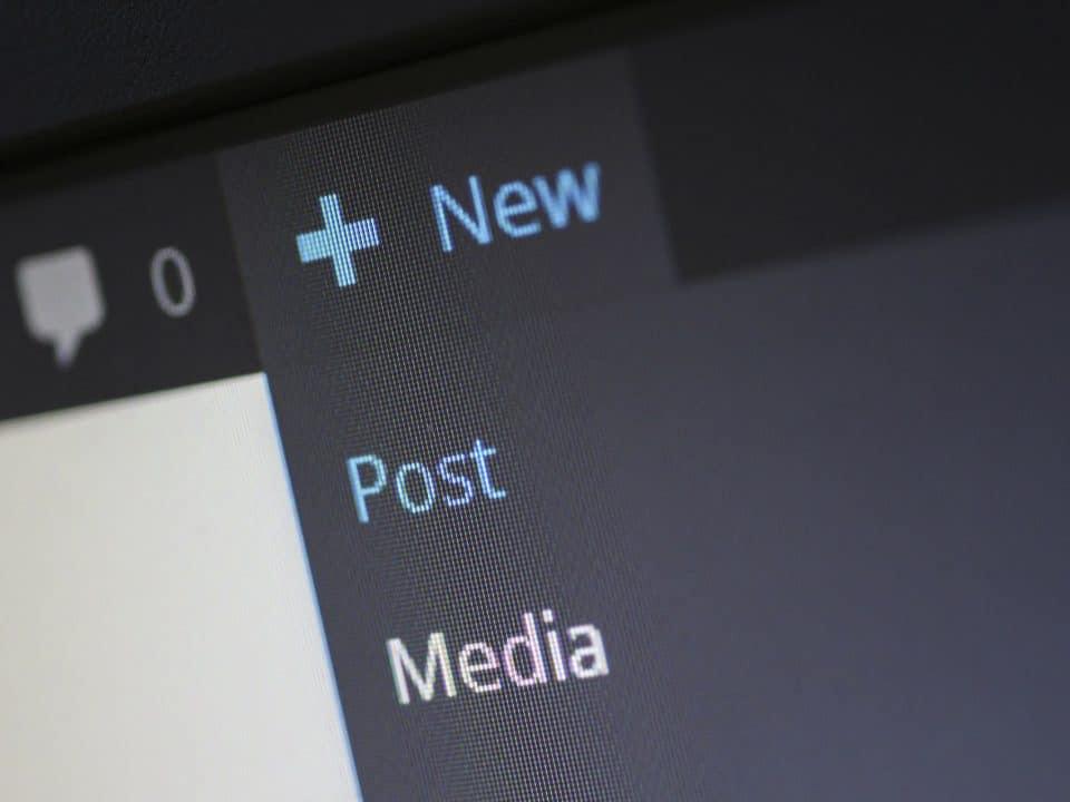 contenido que google y usuarios aman